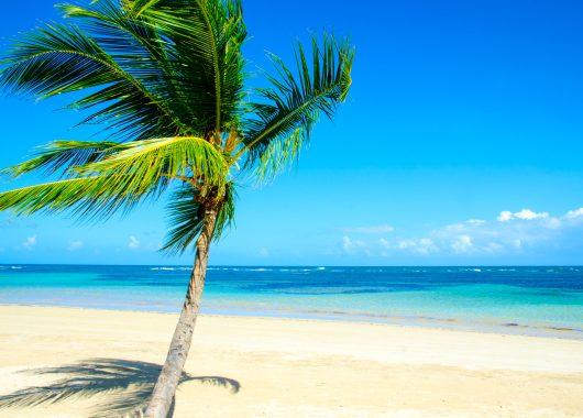 Mauritius: 9 Tage im 3* Hotel inkl. Flügen, Transfers, Rail & Fly und Vollpension ab 1.189€ ab Bremen, Frankfurt, Hamburg…