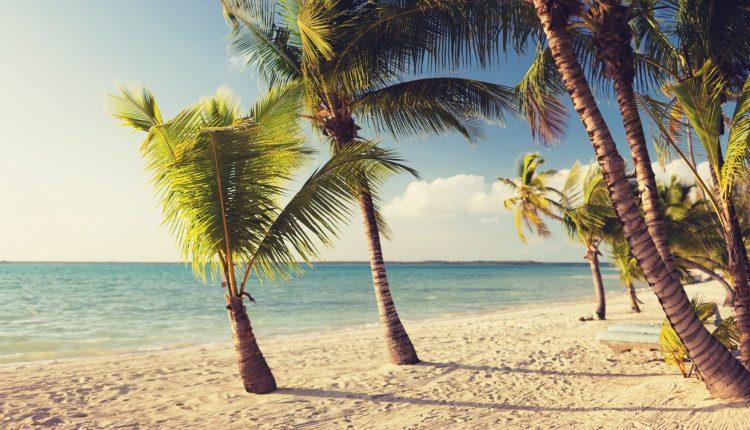 Frühbucher: 2 Wochen Sansibar im November mit Strandunterkunft, Flug und Frühstück für 765€
