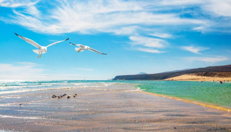Fuerteventura: 7 Tage im 3* Hotel inkl. Flug, Transfer und Frühstück ab 318€