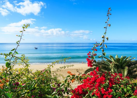 Last Minute Fuerteventura: 5 Tage inkl. Flug, Transfer, Rail & Fly und Unterkunft ab 265€