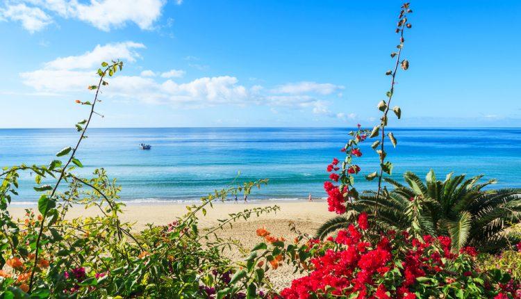 Fuerteventura: Eine Woche im guten Hotel inkl. Flug und Transfer ab 360€ pro Person