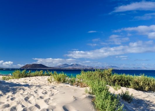 Frühbucher: 1 Woche Lanzarote im 3* Apartment inkl. Halbpension, Flug und Transfer ab 403€