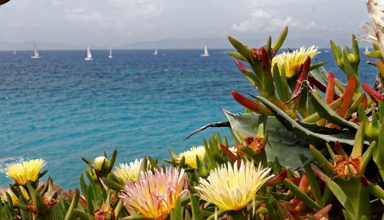Kreta: 8 Tage All Inclusive Luxus im 5*Hotel inkl. Flug und Transfer im Mai ab 399€
