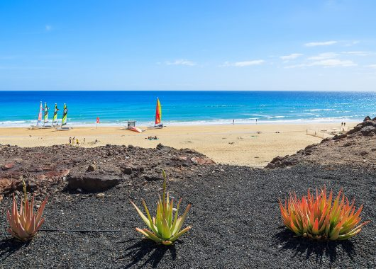 Single-Reise nach Fuerteventura: 7 Tage inkl. Flug und Transfer ab 335 Euro pro Person