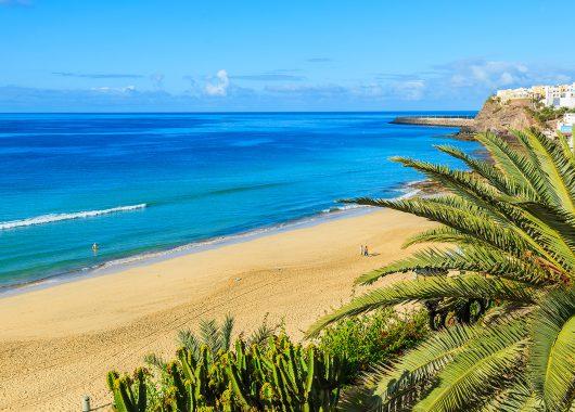 Eine Woche Fuerteventura im guten 3* Apartment inkl. Flug, Zug zum Flug und Transfer ab 318€