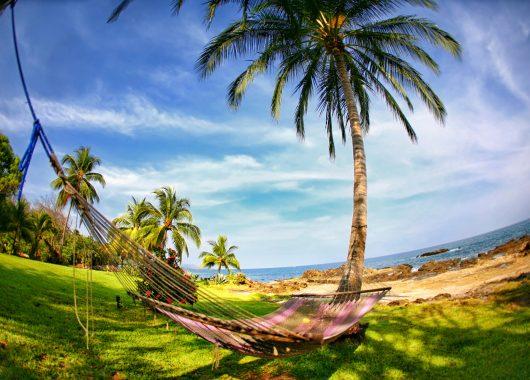 1 Woche Curacao im 4* Hotel mit Flug und Transfer ab 876€