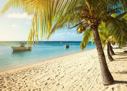 12 Tage Mauritius im 3* Hotel inkl. HP, Flug, Rail&Fly und Transfer ab 1051€