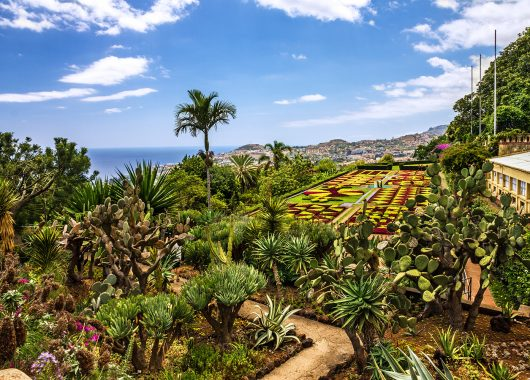 5 Tage Madeira im 3* Hotel inkl. Flug ab 311€