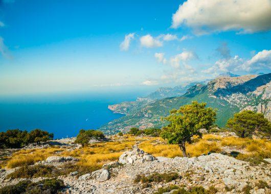 1 Woche Mallorca im 4* Erwachsenenhotel mit Meerblick, Flug und Transfer ab 296€
