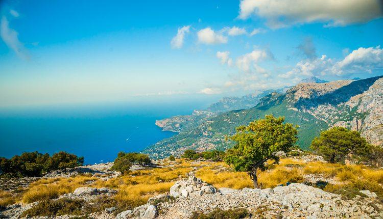 Eine Woche Mallorca im guten 3* Aparthotel inkl. Flügen, Transfers und Rail&Fly ab 270€