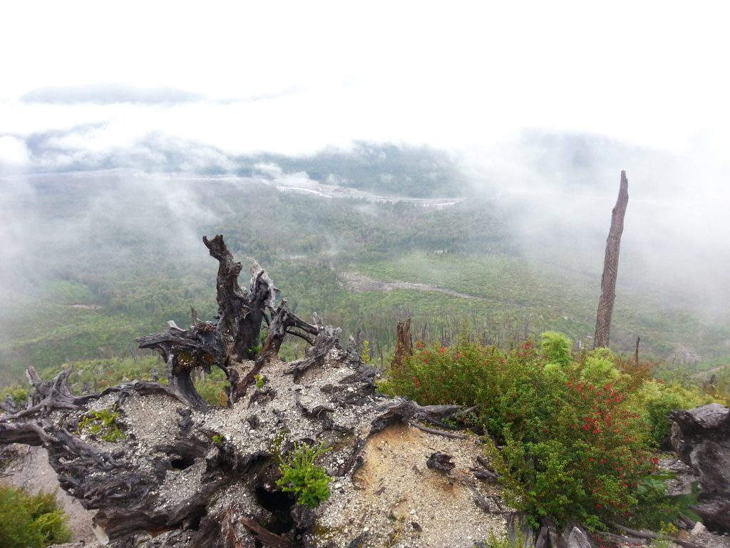 Blick vom Vulkan Chaitén auf den Parque Pumalín
