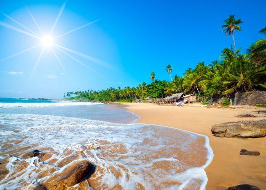 10 Tage Sri Lanka im 3,5* Resort inkl. HP, Flug & Transfer ab 748€
