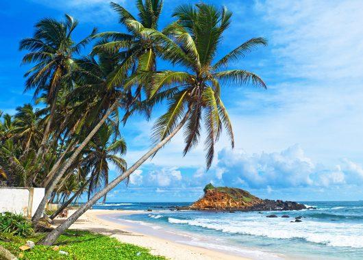 Sri Lanka: 14 Tage im 3*Hotel inkl. Flügen, Transfers und Halbpension ab 989€