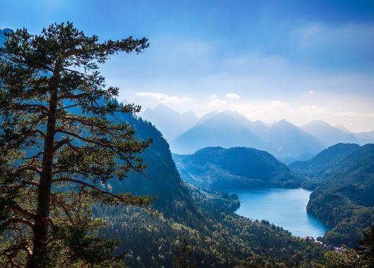 4 Tage im Bayerischen Wald: Gasthaus inkl. Frühstück, Wellness & aktivCard für 84€ pro Person