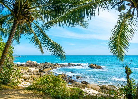 Sri Lanka: 9 Tage im 4* Resort inkl. Flügen, Transfers, Rail&Fly und All In ab 893€