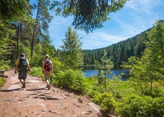 3 – 8 Tage im Bayerischen Wald: Sporthotel mit All Inclusive und Spa ab 79€