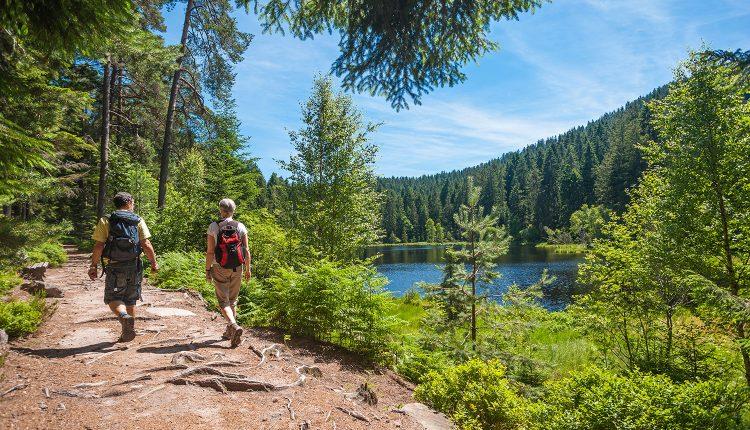 3 Tage im 4,5* Wellness-, Sport- und Golfhotel in Bayern inkl. Halbpension ab 159€