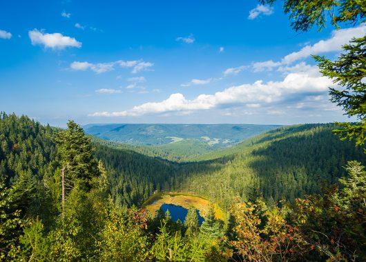 Urlaub im Harz: 3 Tage im Kurhotel Fürstenhof inkl. Frühstück & Wellness für 64,50€ p. P.