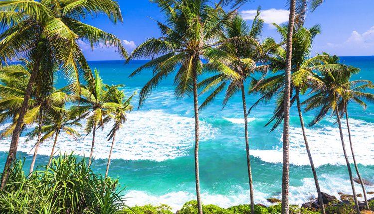 Sri Lanka: 13 Tage All Inclusive im grandiosen 4* Hotel inkl. Meerblick,Flug, Transfer und Rail & Fly ab 1.177€
