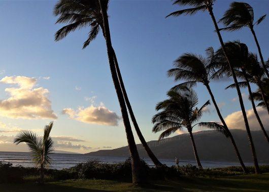 Reisebericht Hawaii: Aloha Maui – (m)ein kleines Paradies