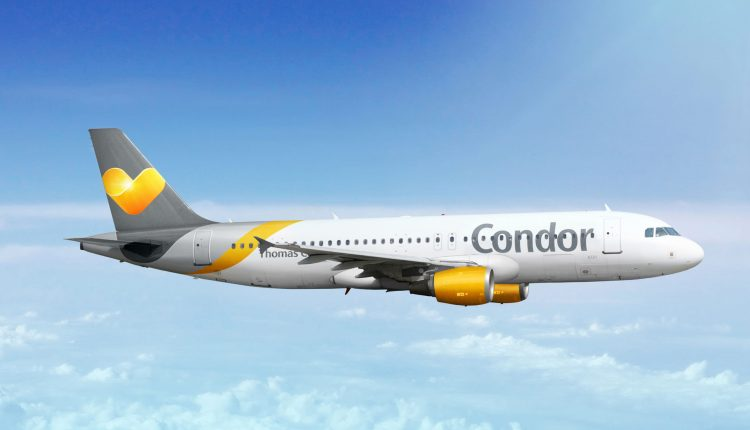Condor Eintagsfliegen mit vielen Angeboten, z.B. Kanaren ab 58,99€, Barbados ab 209,99€