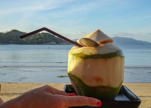 Reisebericht Koh Samui – Dein Traumurlaub im Paradies