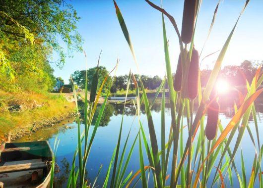 3 – 4 Tage Wellness in Sachsen-Anhalt: 3* Seehotel inkl. Halbpension & Massage ab 89€