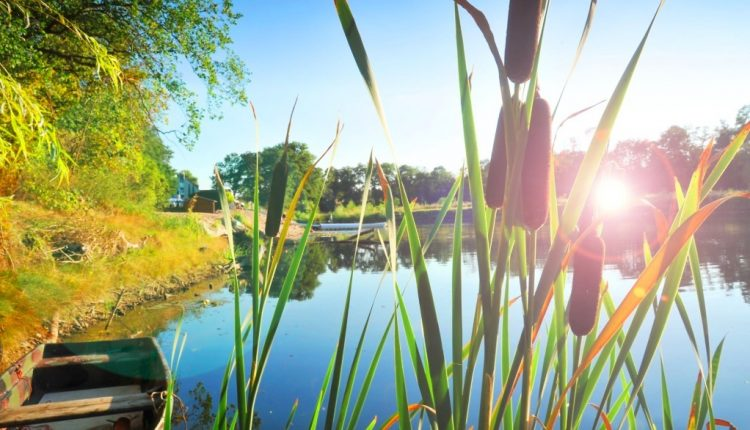 3 – 4 Tage Wellness in Sachsen-Anhalt: 3* Seehotel inkl. Halbpension & Massage ab 99€
