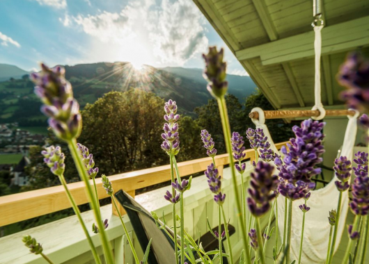 Zillertal: 3 Tage im 3* Hotel inkl. Frühstück, Dinner, E-Bike-Verleih und Spa ab 99€ pro Person