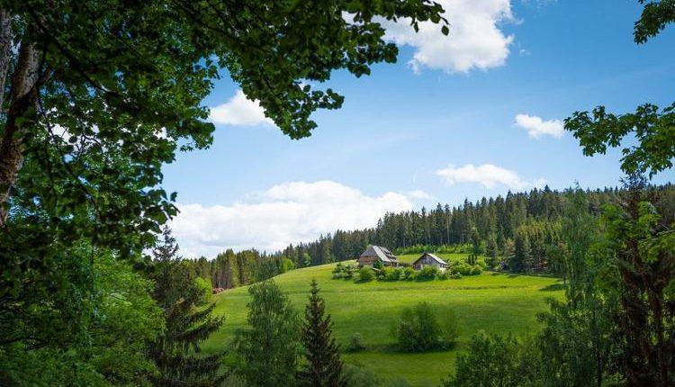 3 bis 6 Tage Auszeit im märchenhaften Schwarzwald ab 59,99€ pro Person